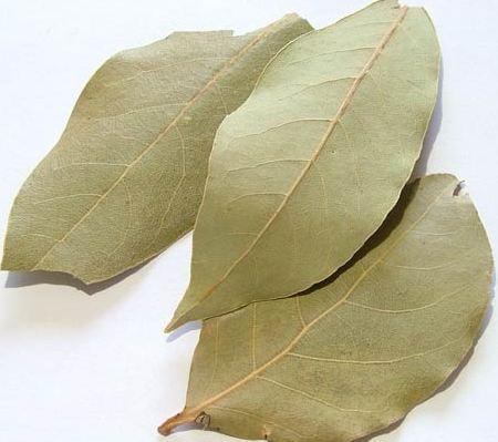 лавровый лист от паразитов в организме